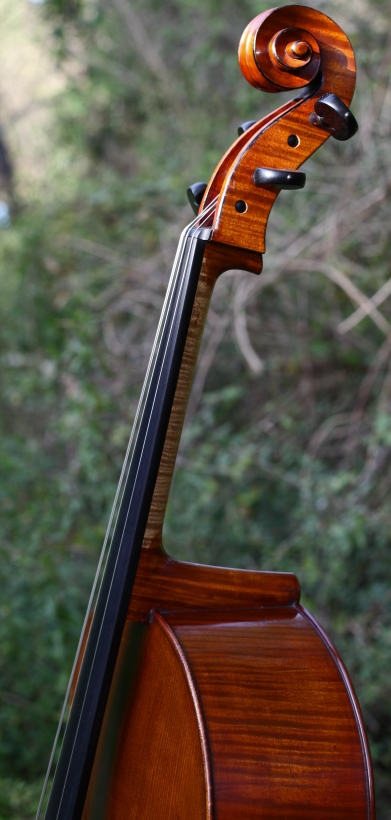 Violoncelle Charles Enel