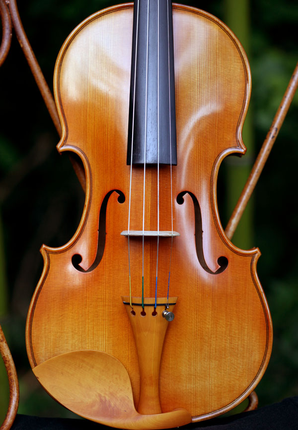 Violon Forest Violin